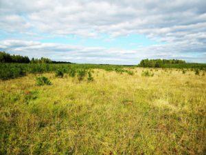 Нецелевое использование земли